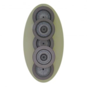 5400-5-Disc-Wall-Light-F1